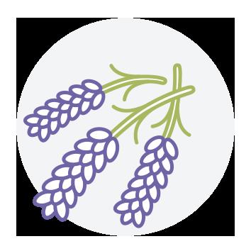 Lavendel-Feeling Goods