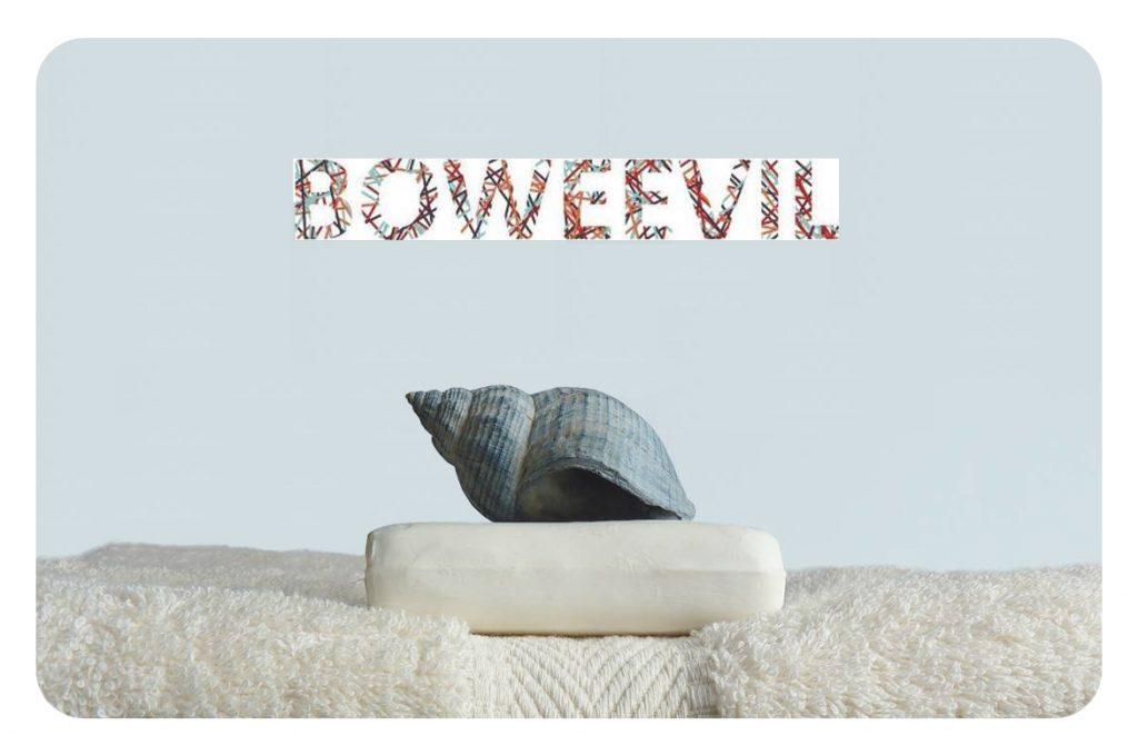 Boweevil-FeelingGoods